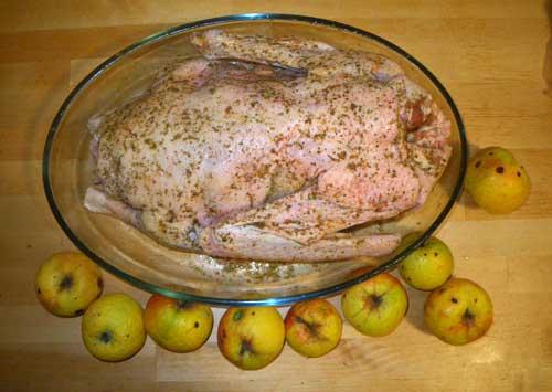 Блюда из птицы кулинария